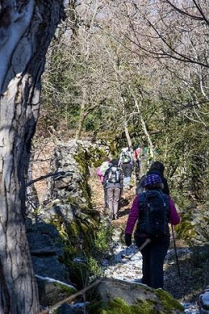 Los senderistas mayores caminando por el bosque cerca de Bonansa